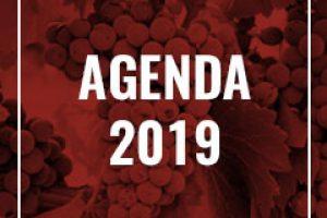 00-categorias-agenda-2019